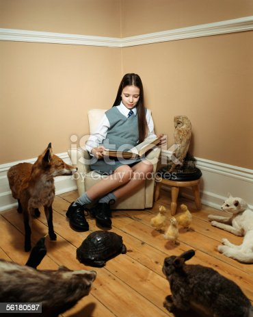 istock Girl reading story to stuffed animals 56180587