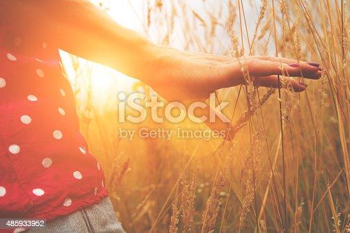 523172398istockphoto Girl relaxing in a wheat-field. 485933952