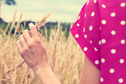 523172398 istock photo Girl relaxing in a wheat-field. 486252902
