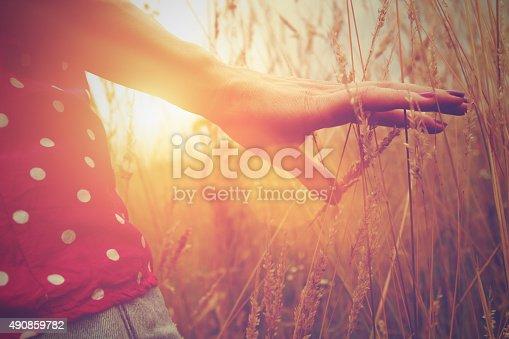 523172398istockphoto Girl relaxing in a wheat-field. 490859782