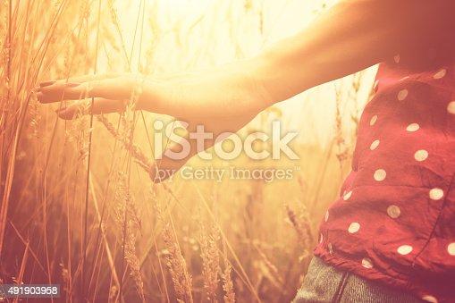523172398istockphoto Girl relaxing in a wheat-field. 491903958