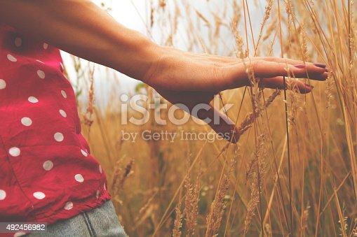 523172398istockphoto Girl relaxing in a wheat-field. 492456982