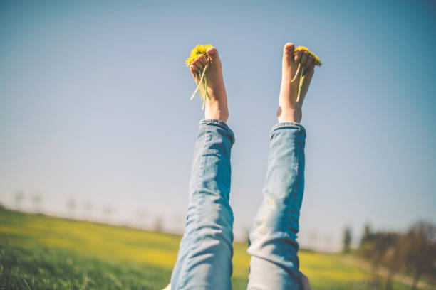 Girl relaxing on the green grass with yellow dandelion between toes in sunny spring day stock photo
