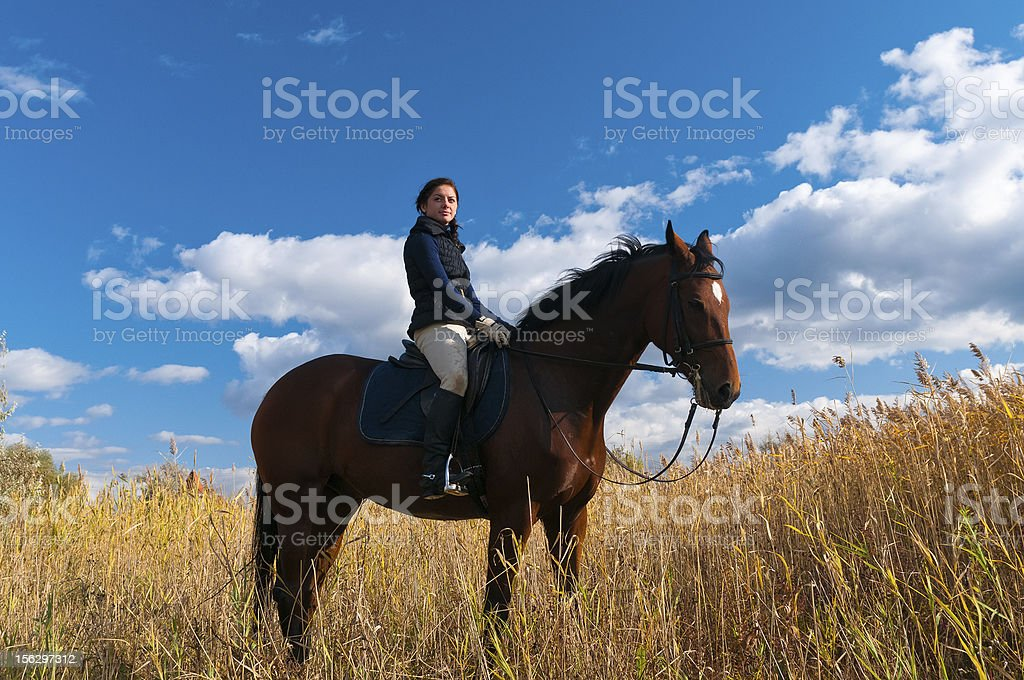 Girl riding horse and look at view front of reed royalty-free stock photo
