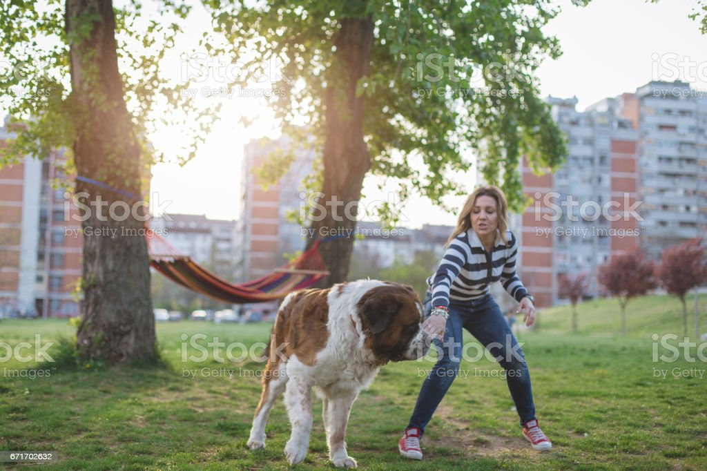 Girl running away from wild dog in the park stock photo
