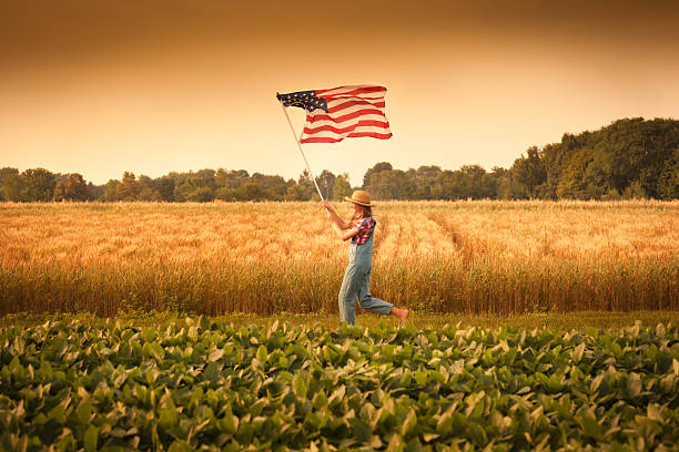 Girl running in farm field waving U.S. flag stock photo
