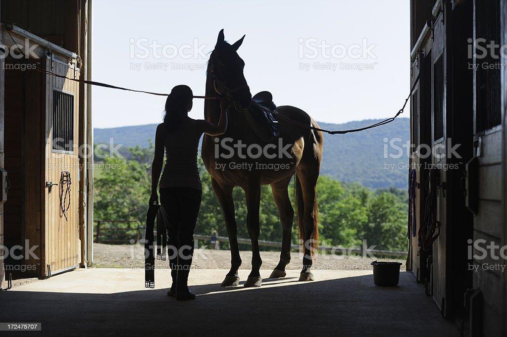 Girl Saddling Horse, Horseback Riding Silhouette royalty-free stock photo