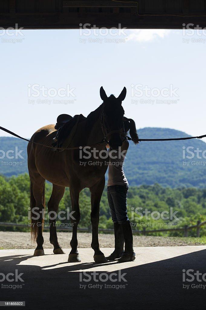 Girl Saddling Horse in Open Barn Door Silhouette stock photo