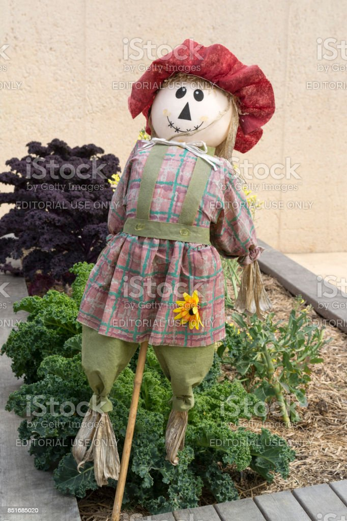 Girl Scarecrow, Kitchen Garden, Adelaide Botanic Garden stock photo