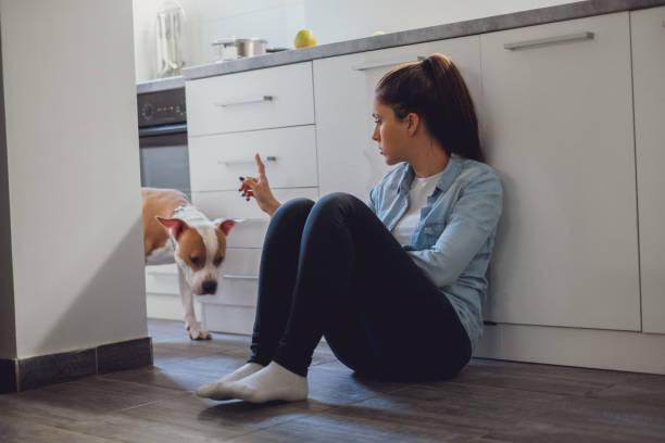 Niña Regan o de su perro en la cocina - foto de stock