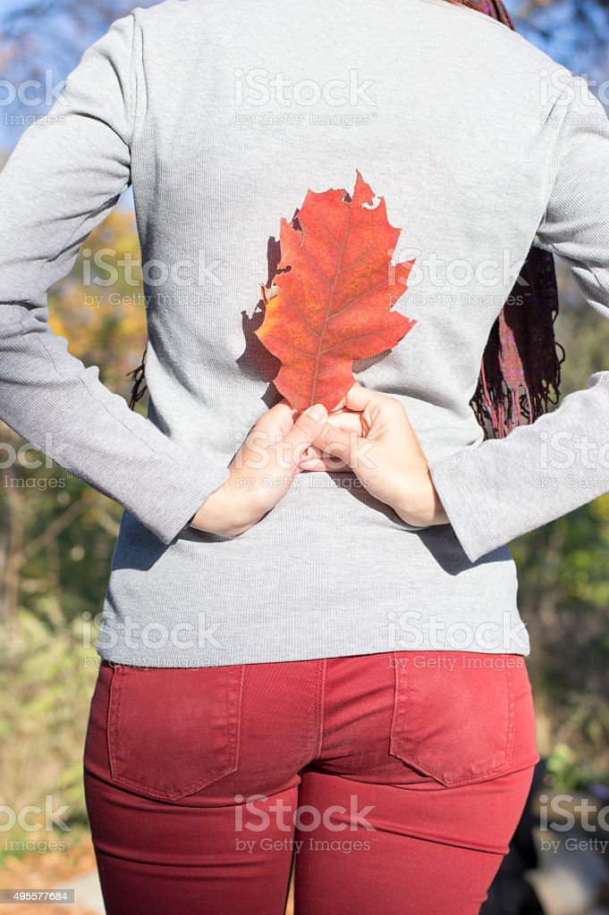 Girl silhouette with red autumn leaf in her hands stock photo