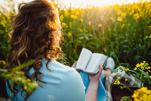 A girl sits in a field on a lawn of yellow flowers, reading a book on a summer sunny day. A beautiful girl in a blue dress reads a Bible. Open reading. Place for text.