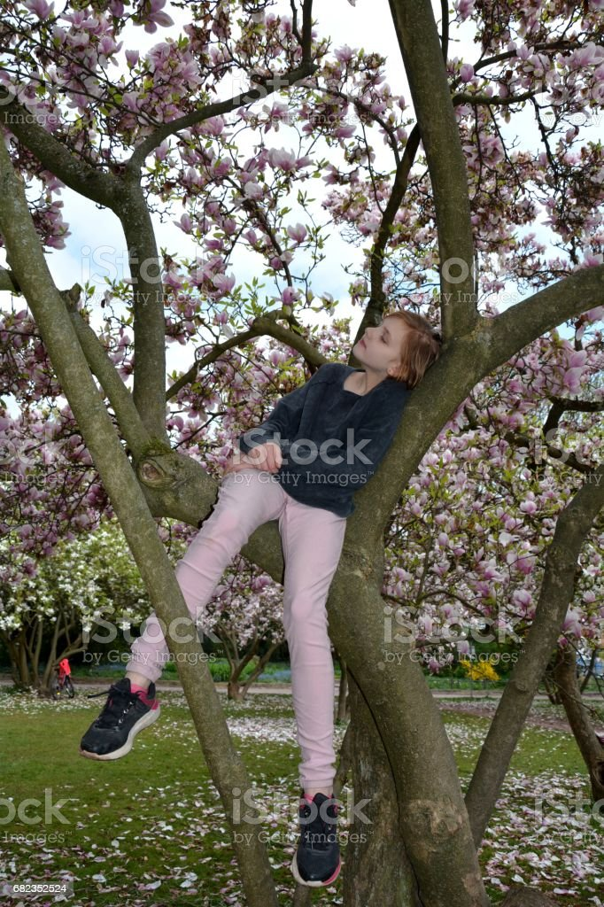 A girl  sits in a tree with  closed the eyes foto stock royalty-free