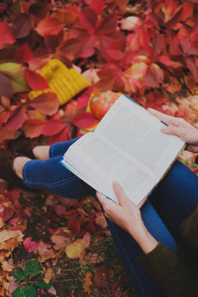 Girl sitting and reading a paper book among colorful ivy foliage in autumn. stock photo