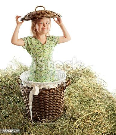 istock Girl sitting in the basket 538064746