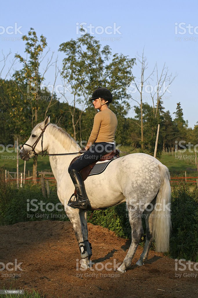 Girl Sitting on a White Horse royalty-free stock photo