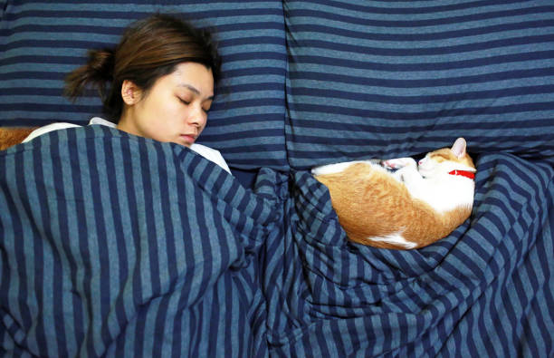 girl sleep with her ginger cat stock photo