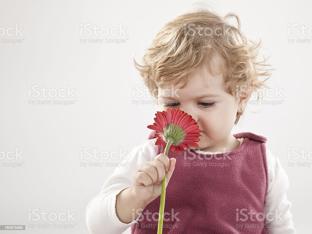 Girl smelling flower royalty-free stock photo