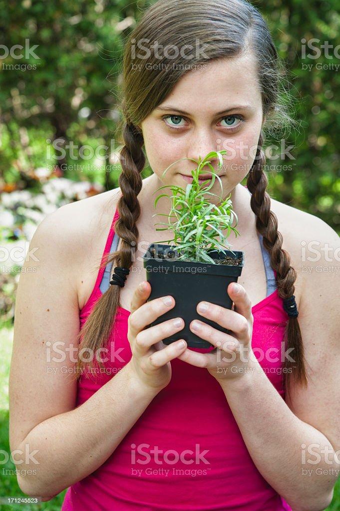 Girl smelling fresh tarragon in the garden. royalty-free stock photo