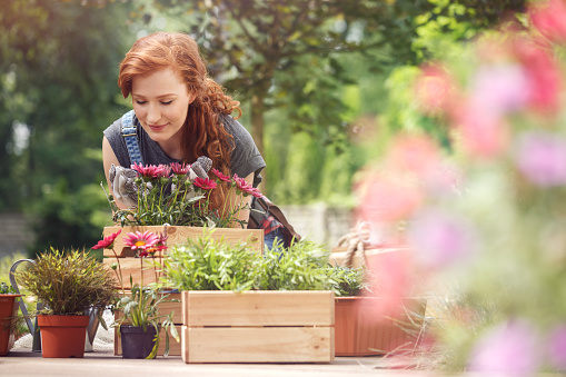 Red-haired girl smelling red flowers in wooden box while relaxing in the garden on a sunny day