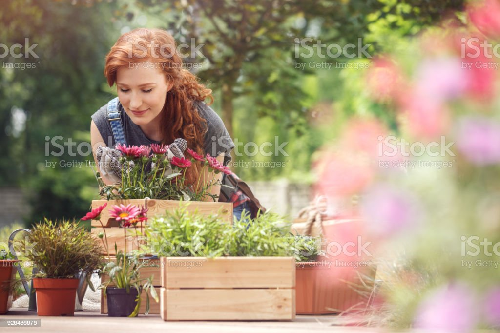 Girl smelling red flowers stock photo