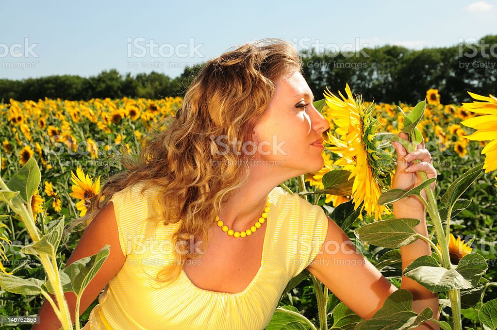 girl smells a sunflower royalty-free stock photo