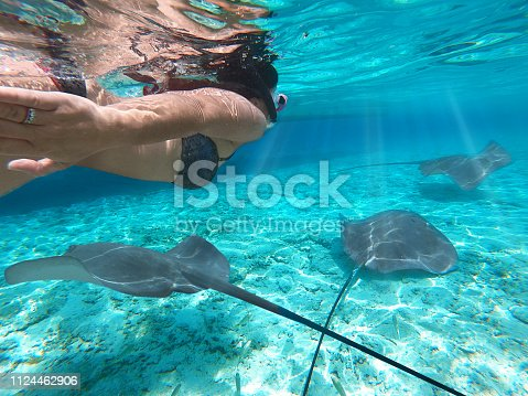 UNDERWATER, CLOSE UP: Happy young woman on holiday dives in the emerald ocean with sea ray and little shark. Cheerful female tourist swimming in the turquoise sea with friendly tropical wildlife.