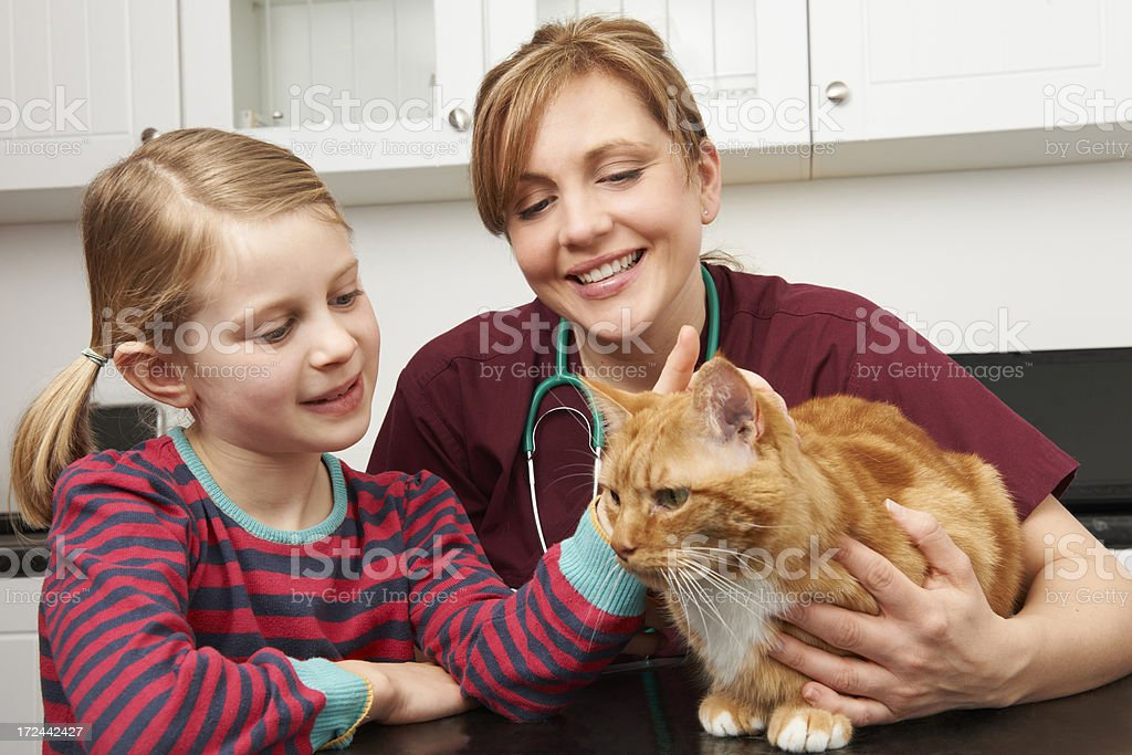 Girl Taking Cat For Vet To Examin stock photo