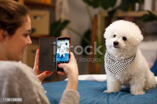 Young girl taking photo of her dog with mobile phone at home.