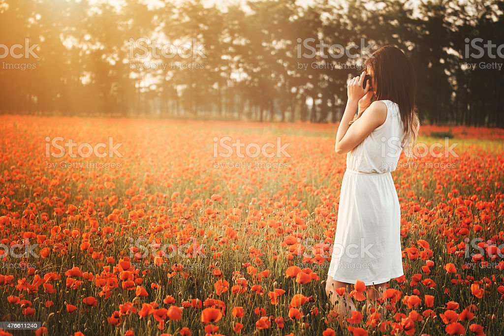 Girl taking picture on poppy field stock photo
