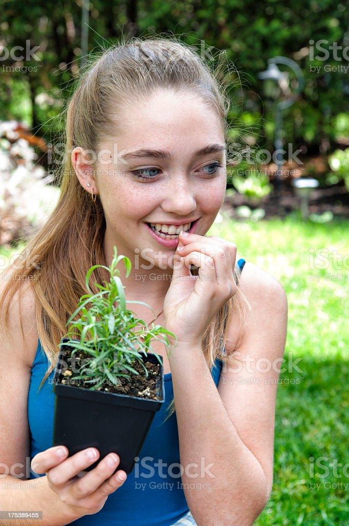 Girl tasting fresh tarragon in the garden. royalty-free stock photo