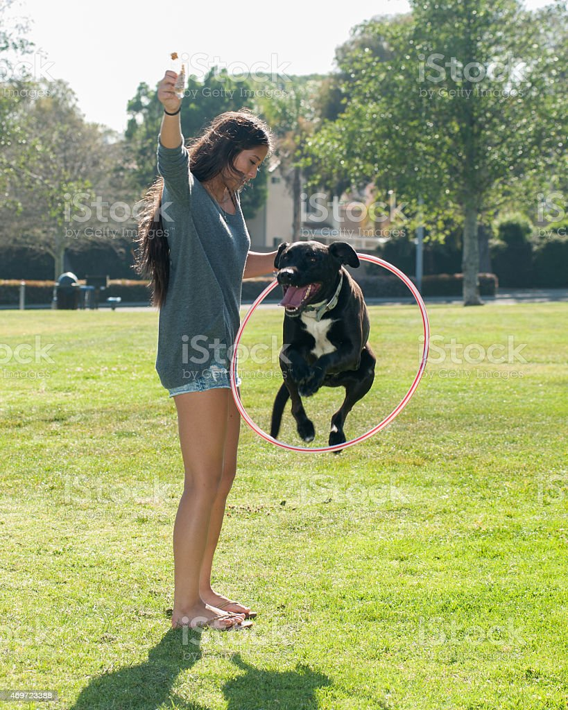 Girl teaching puppy new tricks stock photo