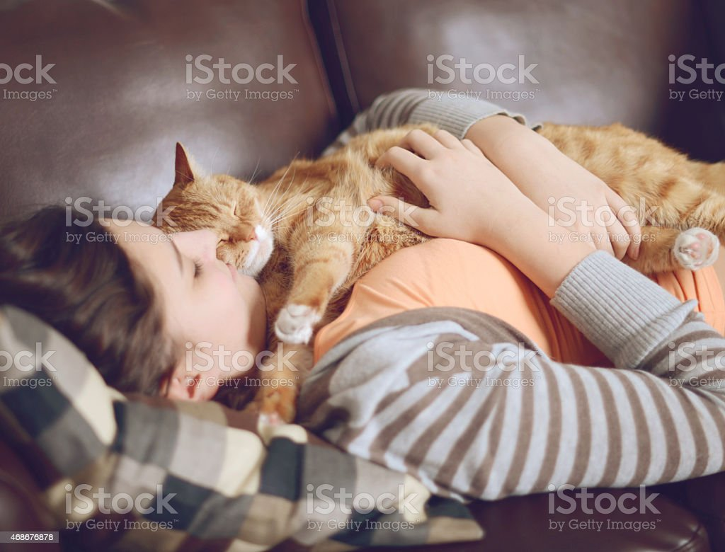Girl teenager in the room with the cat stock photo