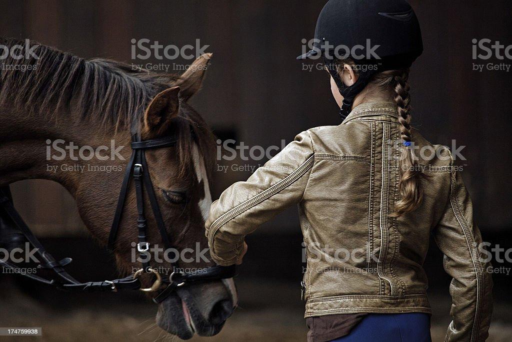 girl touching horse stock photo