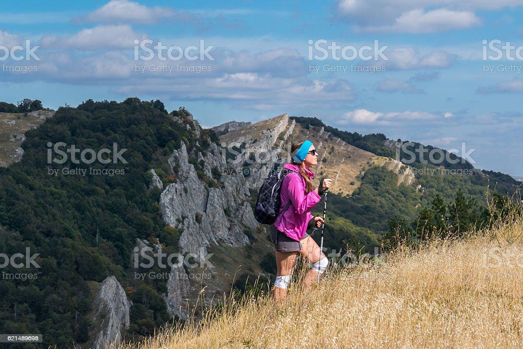 Girl tourist goes on mountainside of Demerdzhi Lizenzfreies stock-foto