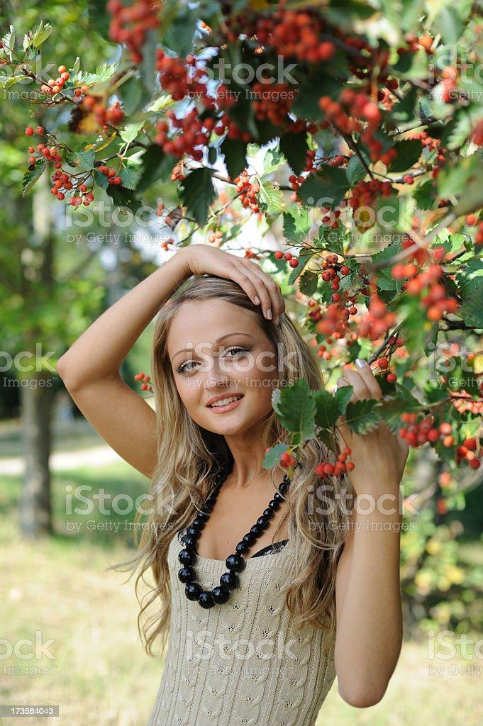 girl under the rowan royalty-free stock photo