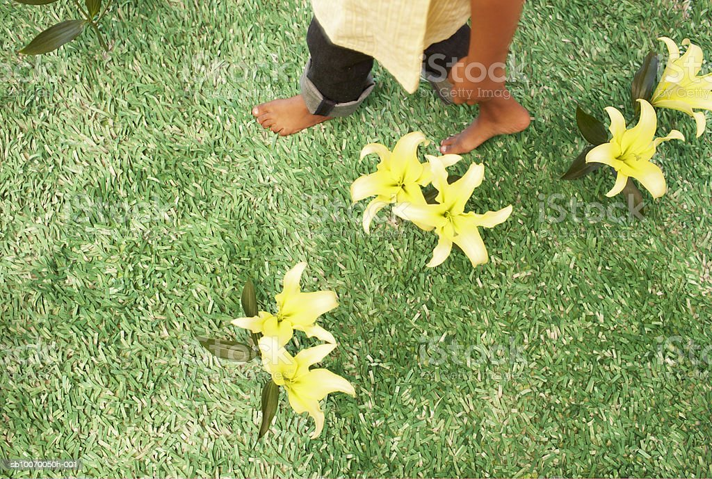Girl (6-7 ) waking on grass with flower, low section, view from above royalty-free stock photo