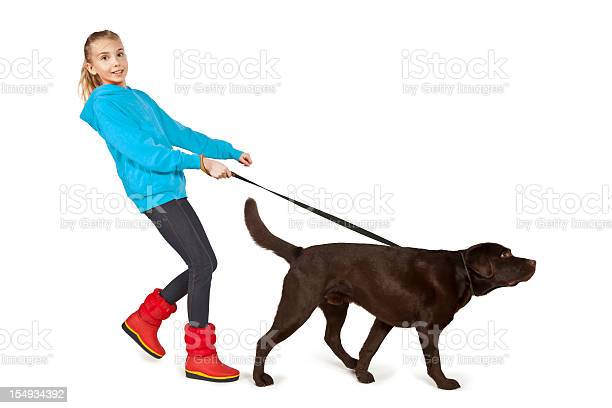 Girl walking a big brown dog on a leash picture id154934392?b=1&k=6&m=154934392&s=612x612&h=e fde83bbb6x7y1iqawd7t2yhxs6ojcfbtp0tph129s=