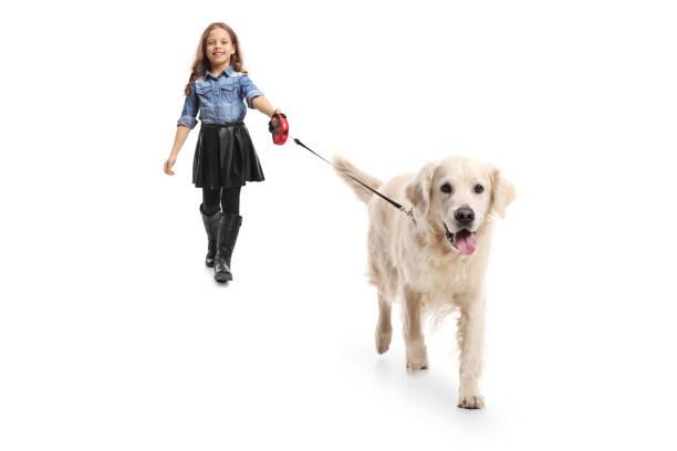 Girl walking a dog picture id910977786?b=1&k=6&m=910977786&s=612x612&w=0&h=shaylcp8xukm8spb6qmbcrjxio9iyg cga5lgcp1esq=