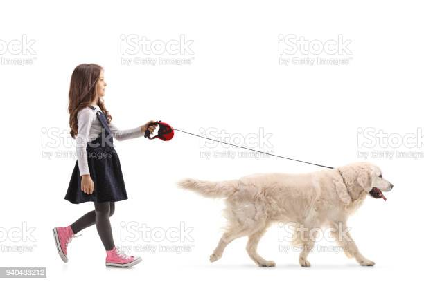 Girl walking a labrador retriever dog picture id940488212?b=1&k=6&m=940488212&s=612x612&h=1xit4sqfvo4mh yjw6znldmjlbdi2baxskrkmb3gdgk=