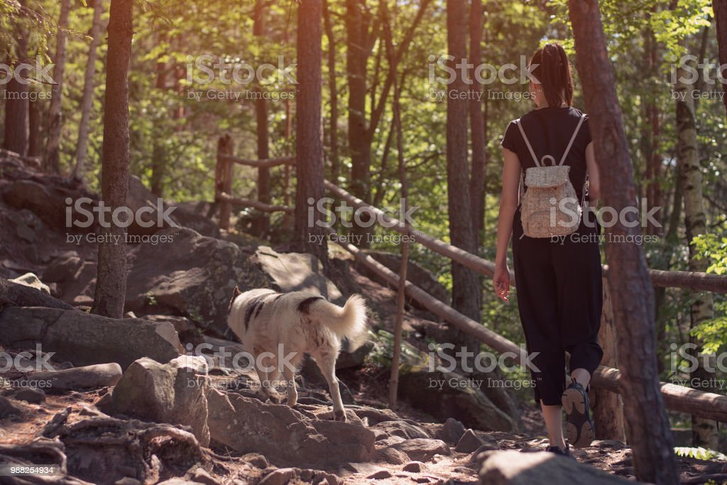 Girl walking along the rocky woods with the dog. Back view