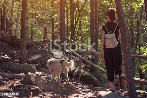 istock Girl walking along the rocky woods with the dog. Back view 988254934