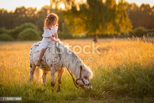 Girl walking at sunset in a field with a horse.Rural life. Summer