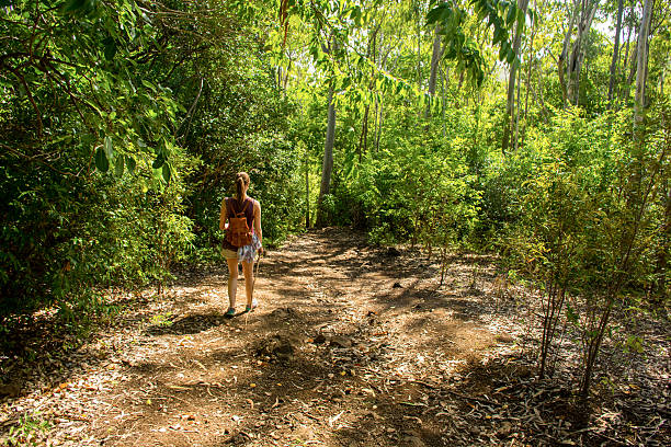 Girl walking down a slope through the jungle stock photo