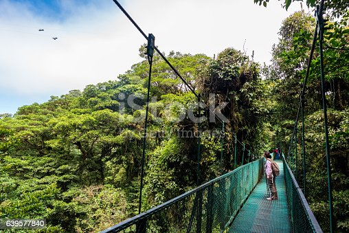 Girl walking on hanging bridge in cloudforest - Monteverde, Costa Rica - adventure in central america
