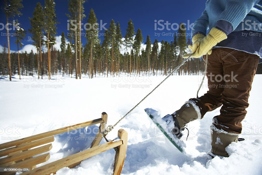 Girl (8-9) walking with sled in snow royalty free stockfoto