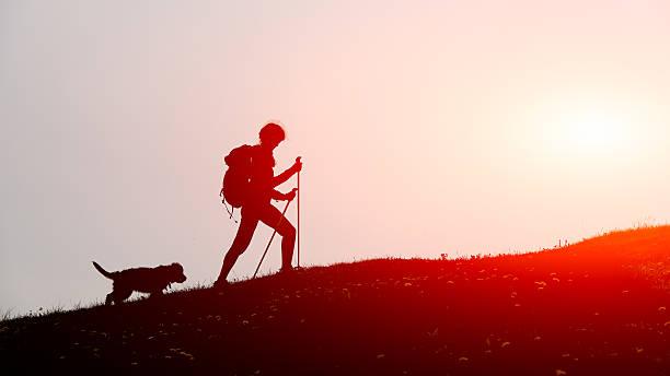 Mädchen geht in die Berge mit seinem Hund – Foto