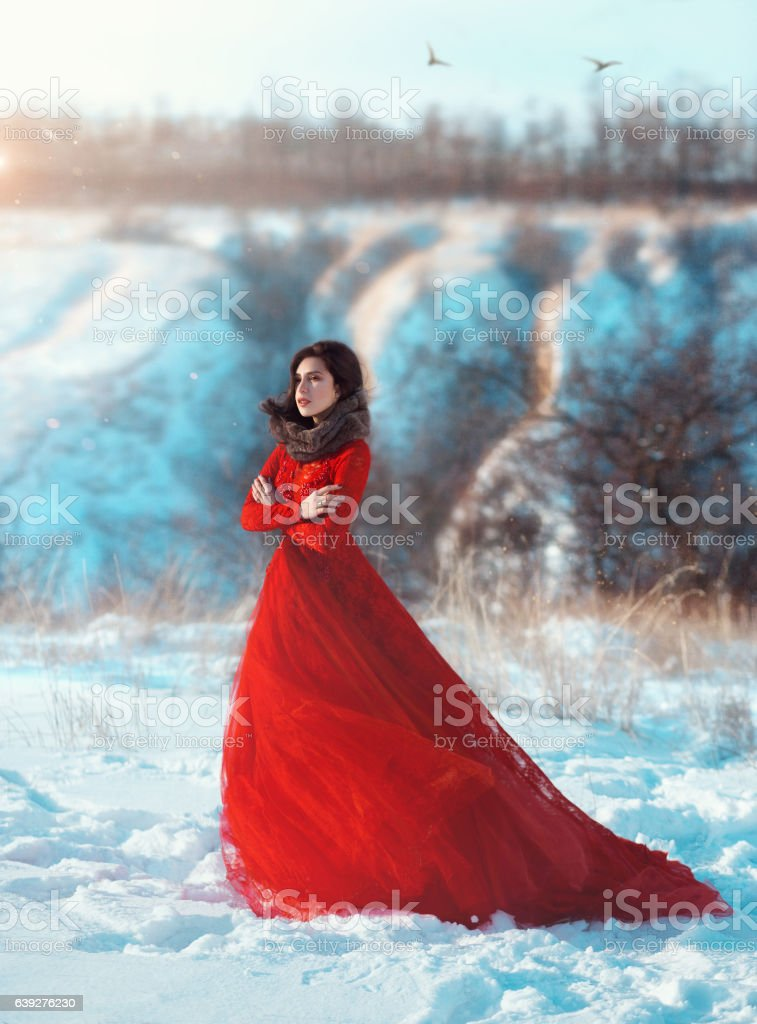 Girl walks in the winter mountains. stock photo