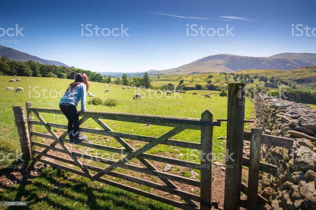 Girl watching sheep in countryside near Keswick, England - Royalty-free 8-9 Years Stock Photo