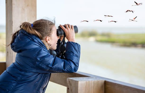 Girl watching through binoculars stock photo